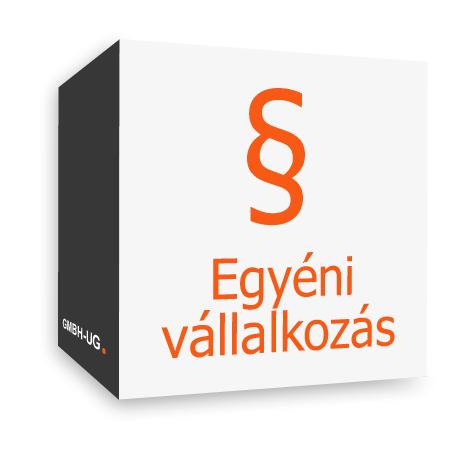 Egyéni vállalkozás alapítása a GmbH-UG.com segítségével